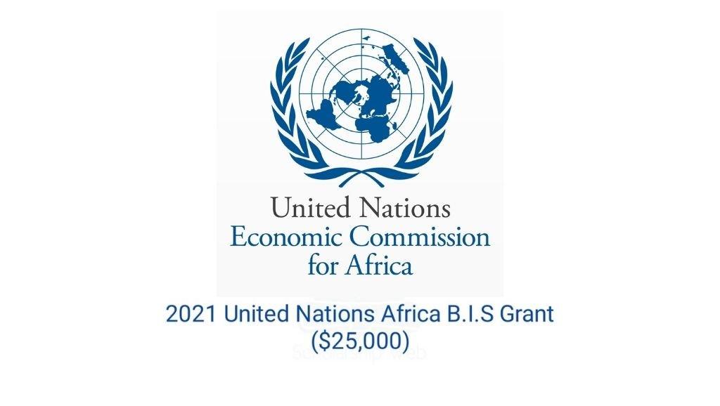 United Nations B.I.S Grant